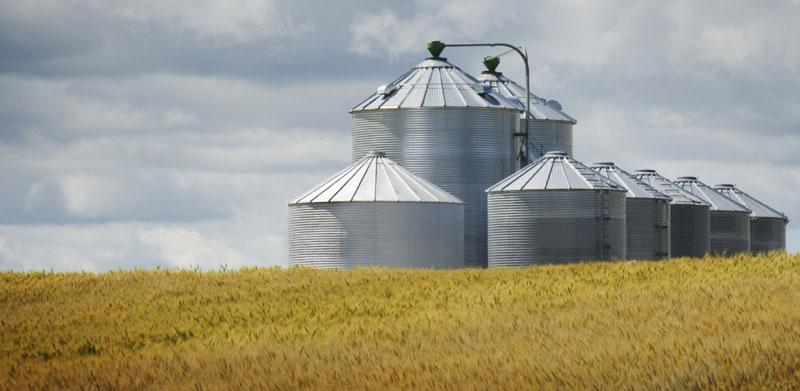 international-feed-mill-installations